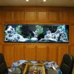 wall-aquarium-designs-triple-m-furnishings-amp-custom-cabinetry-52415