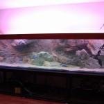 Запуск аквариума размер 300см-70см-60см